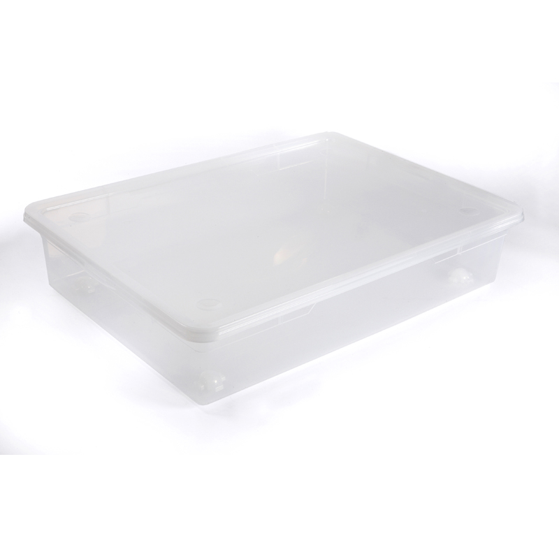 rotho clear box unterbett 55l transparent ebay. Black Bedroom Furniture Sets. Home Design Ideas